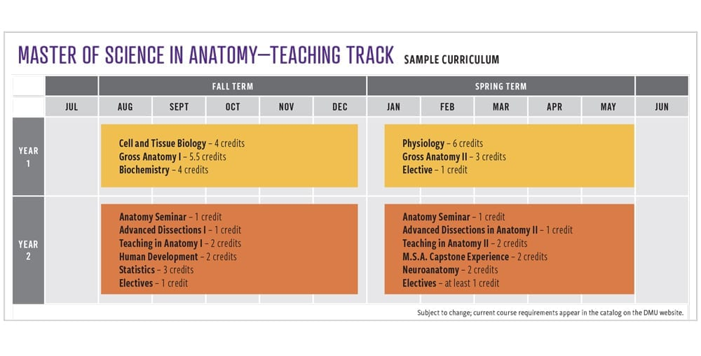 M.S.A. Teaching Track Sample Curriculum