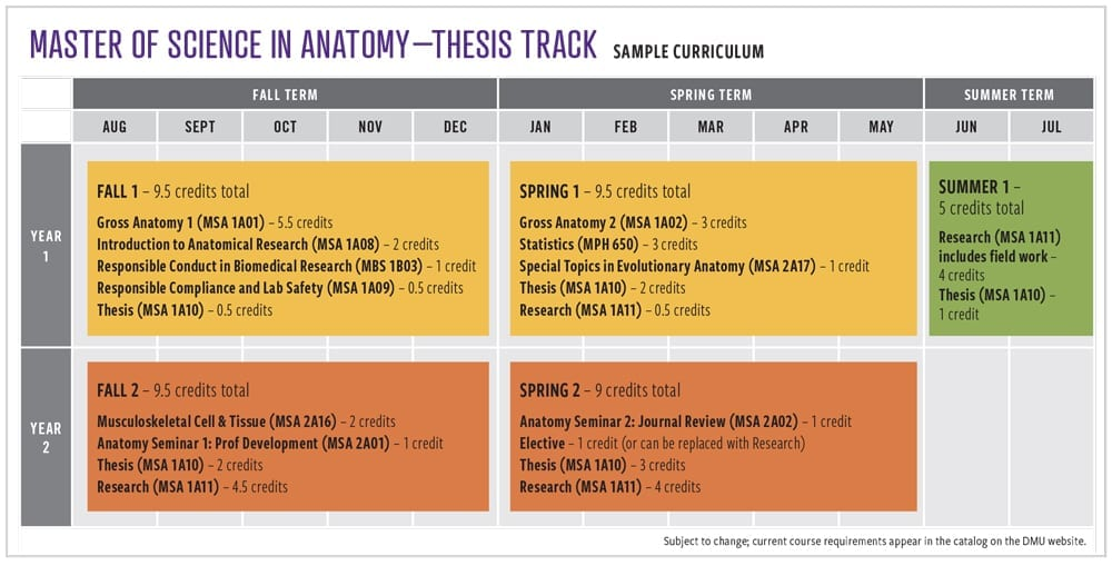 M.S.A. Thesis Track Sample Curriculum