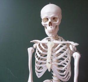 Bones-375x281