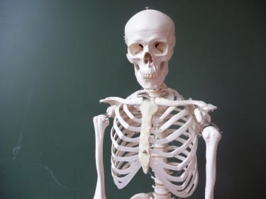 Feed your bones: May is National Osteoporosis Month.