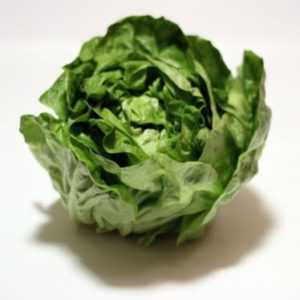Lettuce-375x374
