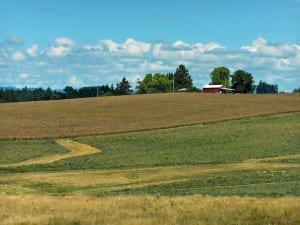 For health care providers, rural America is producing a lot more than crops and cattle.