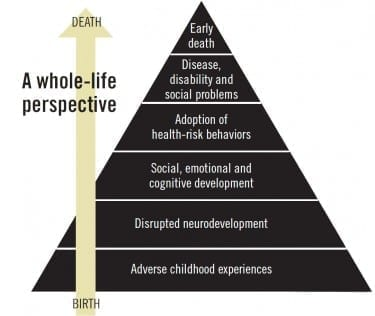 The ACEs pyramid, created by Drs. Robert Anda and Vincent Felitti, shows how childhood trauma connects to social, emotional and cognitive impairment that can lead to the adoption of health-risk behaviors. As the pyramid's shape suggests, adverse childhood experiences don't guarantee bad outcomes, but they greatly increase their likelihood.