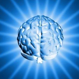 brain1-375x312