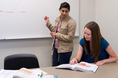 peer tutoring des moines university